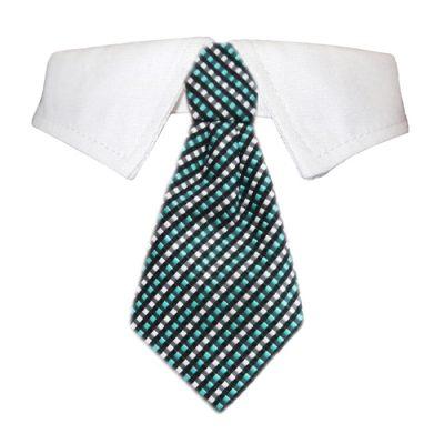 Benjamin Shirt Collar