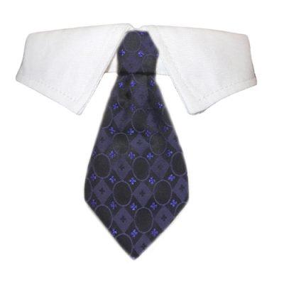 Daniel Shirt Collar