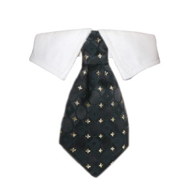 Stanley Shirt Collar