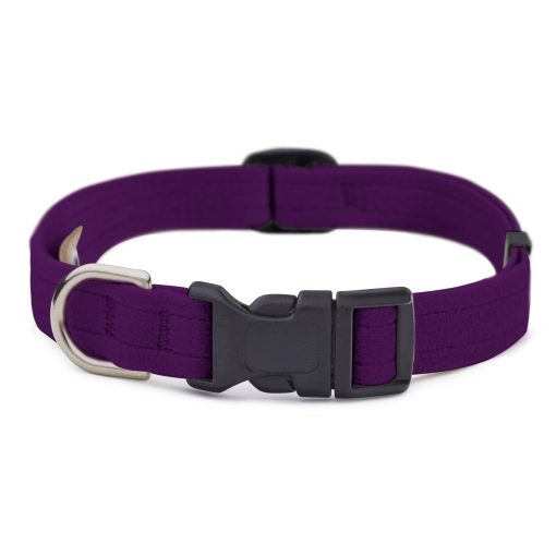 Amethyst Quick Release Collar
