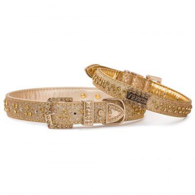 VP Pets Signature Diamond Name Plate Leatherette Collar – Gold