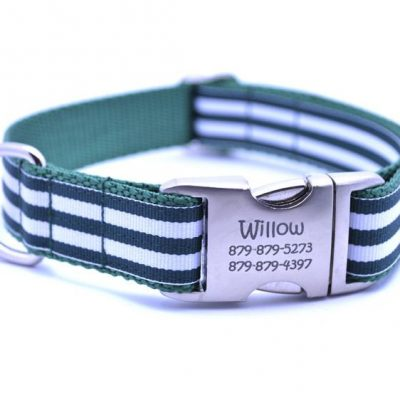 Cabana Stripe Dog Collar with Laser Engraved Personalized Buckle - HUNTER