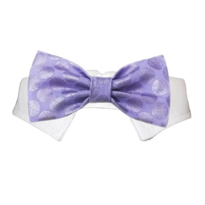 Dylan Bow Tie