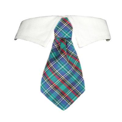 Eli Shirt Collar
