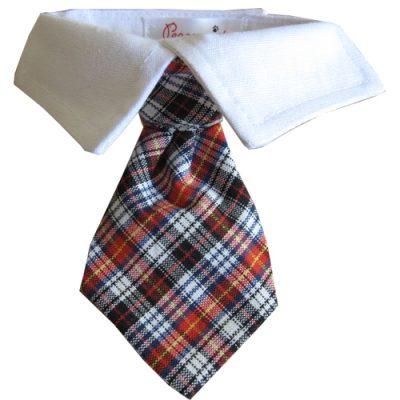 Nicholas Shirt Collar