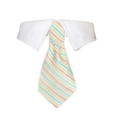 Parker Shirt Collar