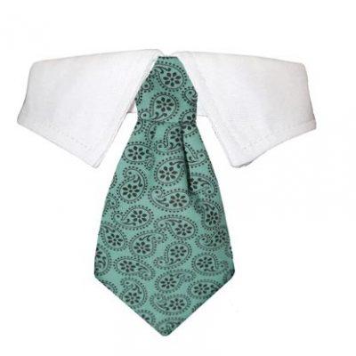 Shirt Collars/Bow Ties