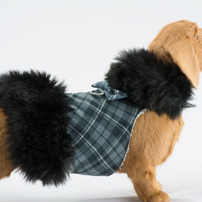 Scotty Black Fox Fur Coat