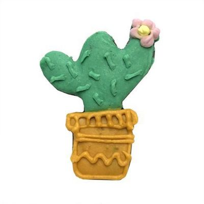 Cactus (case of 12)