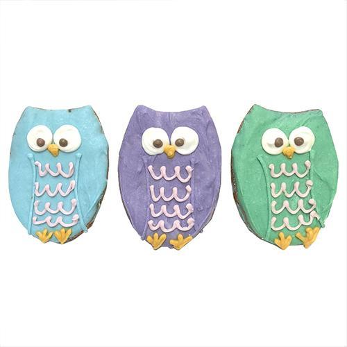 Owls (case of 12)