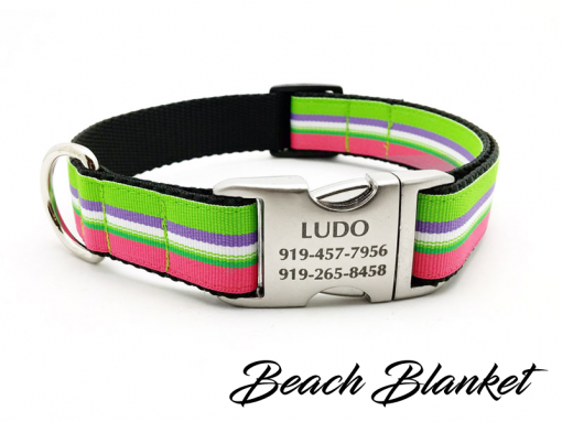 Beach Blanket Stripe Dog Collar with Laser Engraved Personalized Buckle