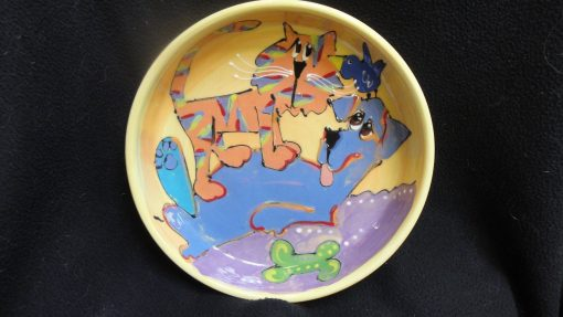 Cat Bowl
