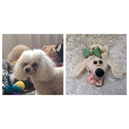 Poodle Dog Face