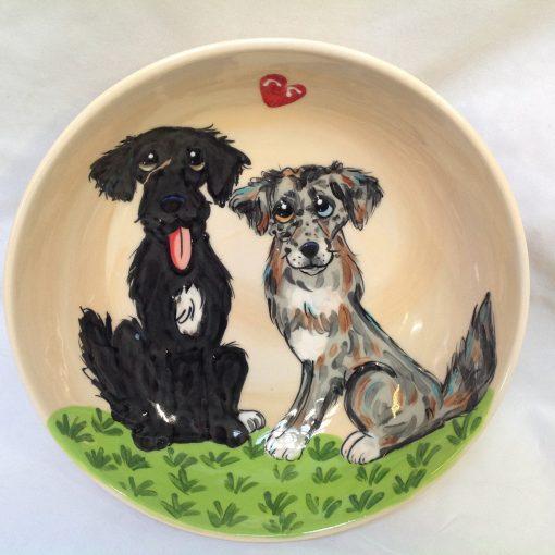 Australian Shepherd Dog Bowl