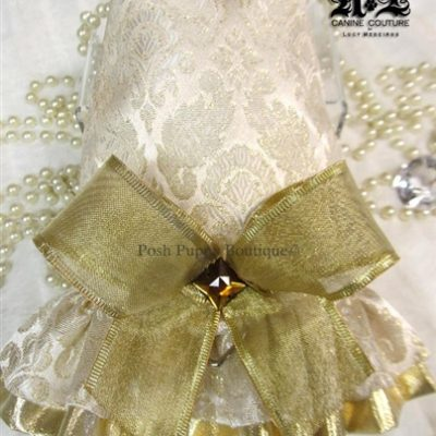 Couture Hanna Gold Dog Harness Dress