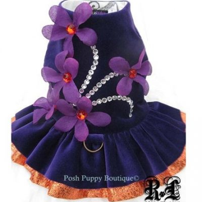 Couture Exotic Orchid Dog Harness Dress