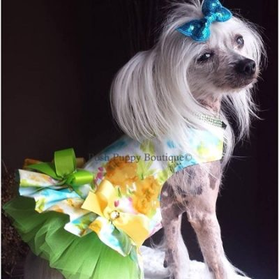 Couture Water Colors Dog Harness Dress