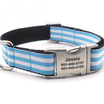 Cabana Stripe Dog Collar with Laser Engraved Personalized Buckle - LIGHT BLUE