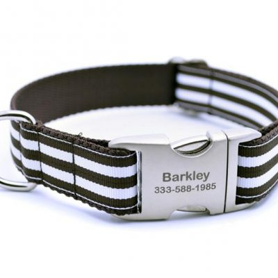 Cabana Stripe Dog Collar with Laser Engraved Personalized Buckle - CHOCOLATE