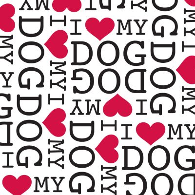 non-toxic soy-based gift wrap to present dog gifts