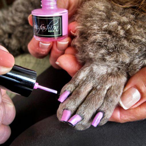 cute paw pink dog nail polish