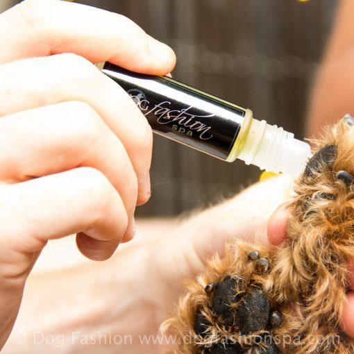 dog paw + nose moisturizer