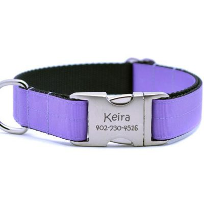 Ribbon & Webbing Dog Collar with Laser Engraved Personalized Buckle - DARK ORCHID