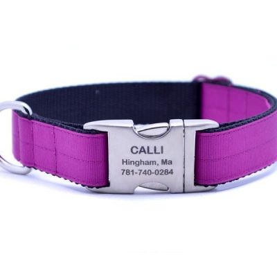 Ribbon & Webbing Dog Collar with Laser Engraved Personalized Buckle - FESTIVE FUCHSIA