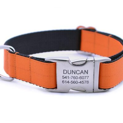 Ribbon & Webbing Dog Collar with Laser Engraved Personalized Buckle - PUMPKIN