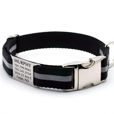 Black Reflective Dog Collar with Personalized NamePlate