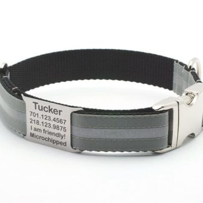 Dove Gray Reflective Dog Collar with Personalized NamePlate