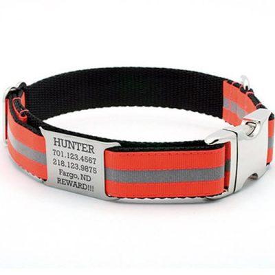 Blaze Orange Reflective Dog Collar with Personalized NamePlate