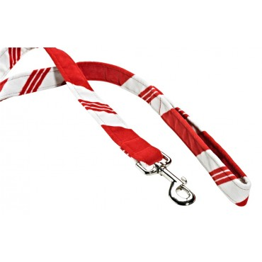 Leashes Peppermint Stripe