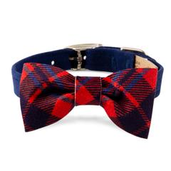 Scotty Collar Chestnut Plaid