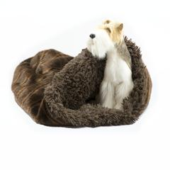 Chocolate Sable with Chocolate Shag Cuddle Cup