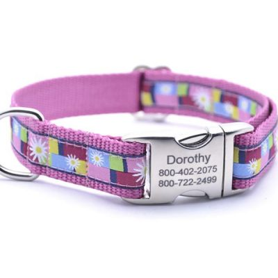 Daisy Color Blocks Dog Collar with Personalized Buckle - Pink