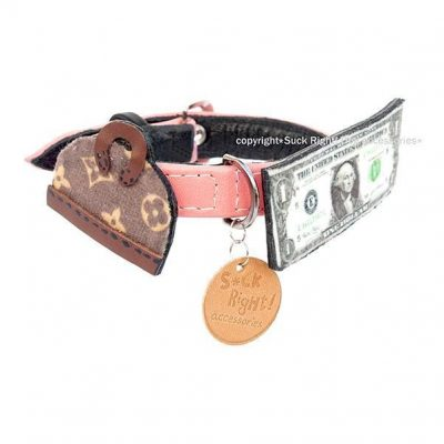 A Real Fashionista Dog Collar
