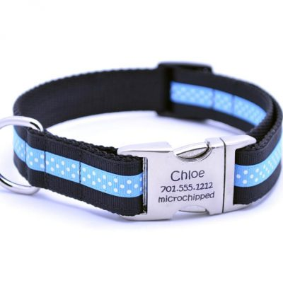 Black/Aqua Mini Polka Dot Dog Collar with Laser Engraved Personalized Buckle