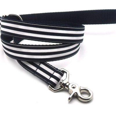 Cabana Stripe Dog Leash
