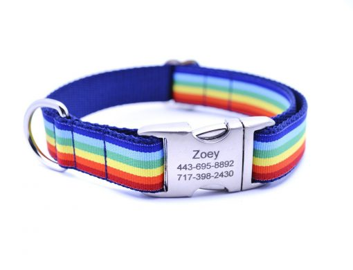 Cabana Stripe Dog Collar with Laser Engraved Personalized Buckle - RAINBOW
