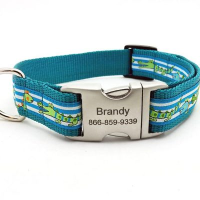 T-Rex Dog Collar with Personalized Buckle