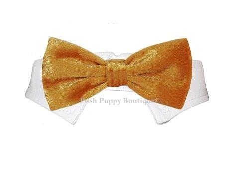 Valentino Bow Tie - Gold
