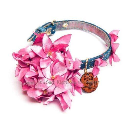 Oh Pink Hortensia Dog Collar