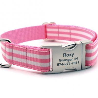 Cabana Stripe Dog Collar with Laser Engraved Personalized Buckle - PINK