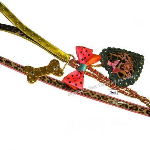 Rita Ora Dog Leash