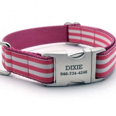 Cabana Stripe Dog Collar with Laser Engraved Personalized Buckle - ROSE