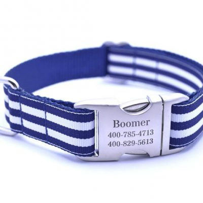 Cabana Stripe Dog Collar with Laser Engraved Personalized Buckle - ROYAL