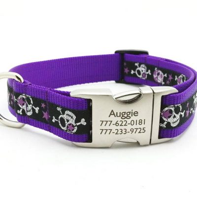 Stars & Skulls Dog Collar with Personalized Buckle