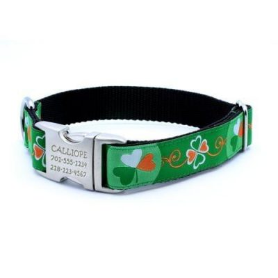 St. Patty Dog Collar with Personalized Buckle