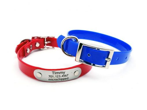 SunGlo Waterproof Collar with Laser Engraved NamePlate